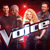 thevoice6-coaches