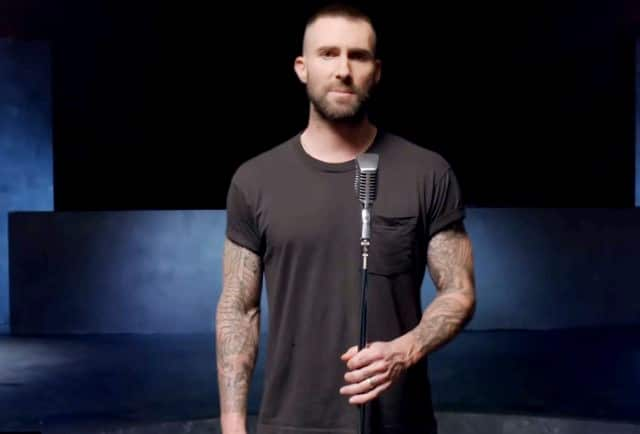 Adam Levine Girls Like You Video