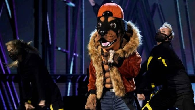 """THE MASKED SINGER: The Rottweiler in the all-new """"Mask Us Anything"""" episode of THE MASKED SINGER airing Wednesday, Nov. 6 (8:00-9:00 PM ET/PT) on FOX. © 2019 FOX MEDIA LLC. CR: Michael Becker / FOX."""