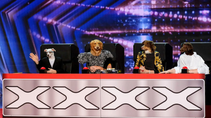 """AMERICA'S GOT TALENT -- """"1601"""" -- Pictured: The Canine Stars -- (Photo by: Trae Patton/NBC)"""